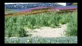 Landschaftsarchitektur auf Youtube – Der bdla jetzt mit eigenem Channel