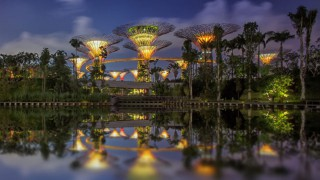Gardens By The Bay / Singapur: Grant Associates und Wilkinson Eyre Architects
