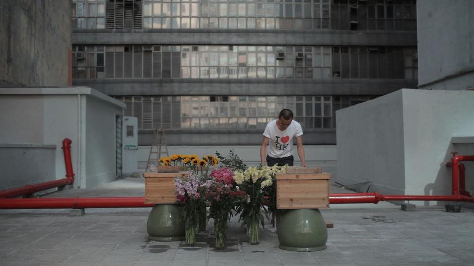 Hobby-Imker zwischen Hochhäusern ... in Hong Kong